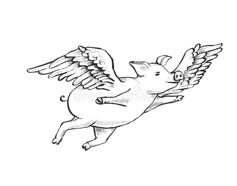 konturowy kreskowy rysunek komarnic świnie royalty ilustracja