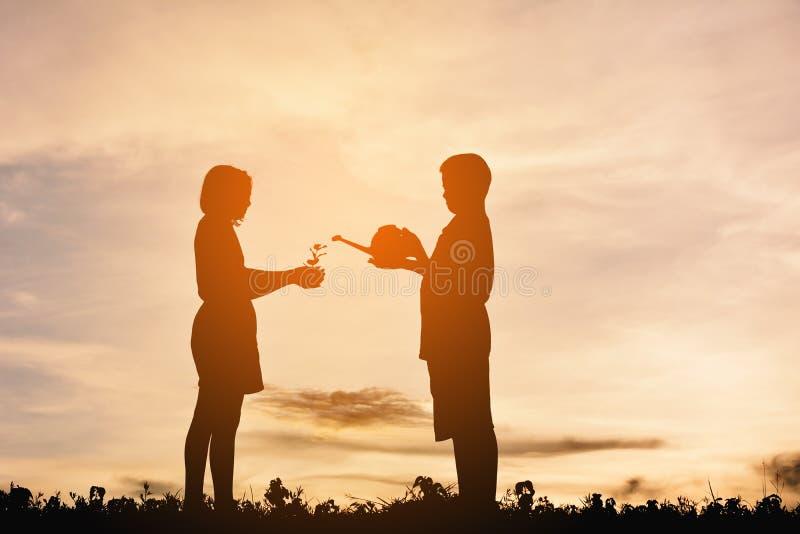 Konturpojke med flickan som bevattnar den lilla växten under himmelsolnedgång royaltyfri fotografi