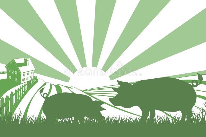 Kontursvin på lantgård vektor illustrationer