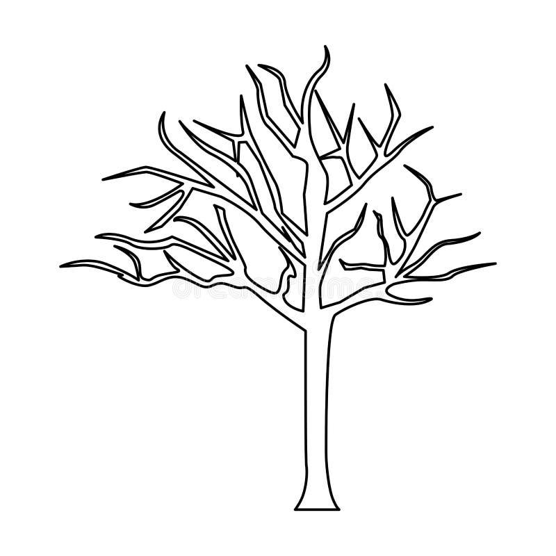konturträd med filialer utan sidor royaltyfri illustrationer
