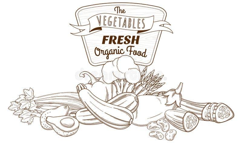 Konturu nakreślenia warzywa wciąż życia ręka rysujący skład (mieszkanie ilustracja wektor