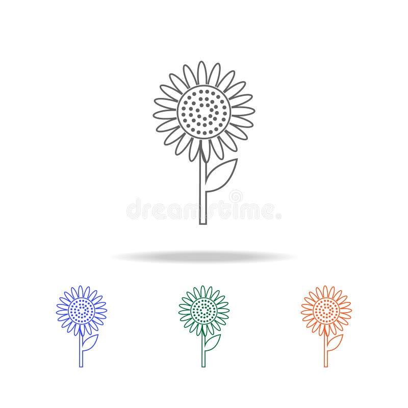 Konturu słonecznika ikona Elementy owoc i warzywo w wielo- barwionych ikonach Premii ilości graficznego projekta ikona ikona pros ilustracja wektor