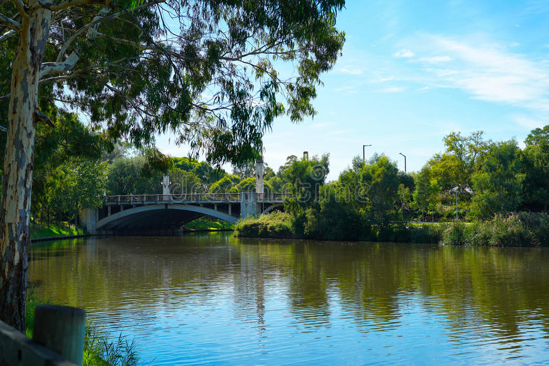 Konung William Road Bridge, Adelaide, södra Australien royaltyfria bilder