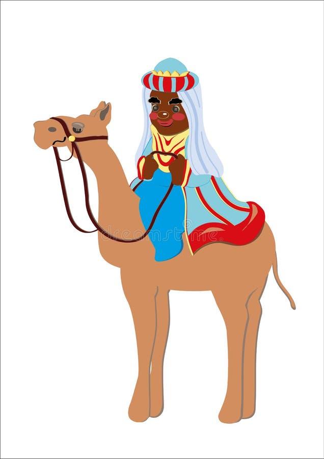 Konungmaguskamel royaltyfri illustrationer