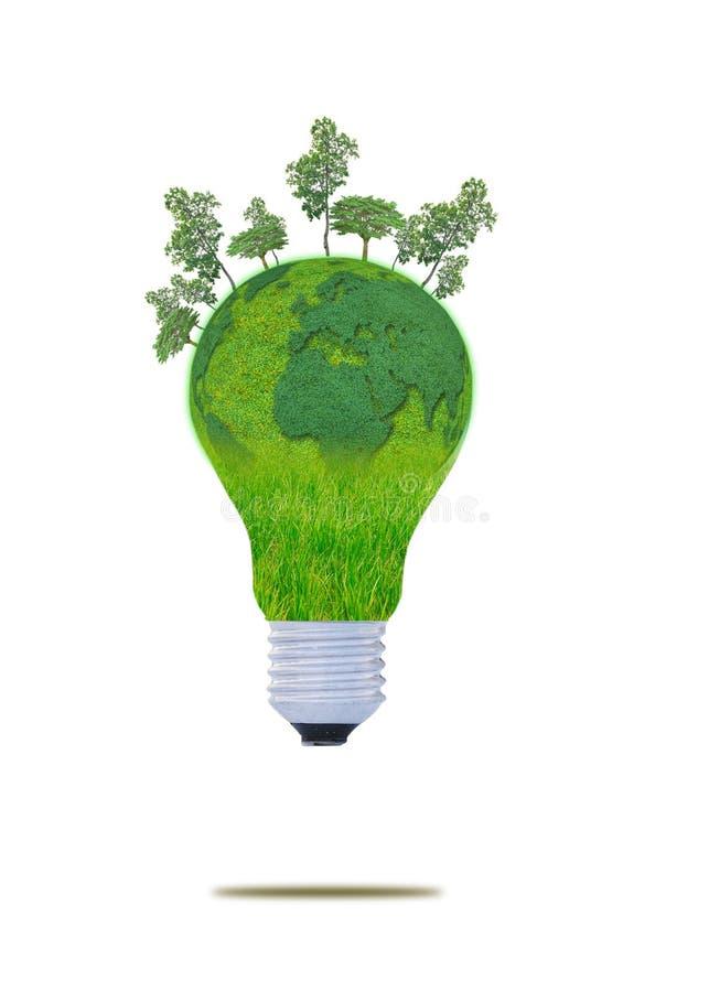 Konzept der natürlichen Energie. mit Glühlampe vektor abbildung