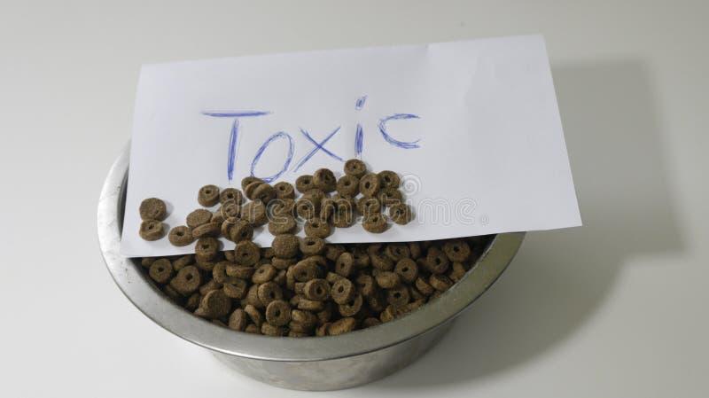 Konzept des Lebensmittels für Haustiere Natürliches und trockenes Lebensmittel in den Metallschüsseln lokalisiert auf weißem Hint lizenzfreies stockbild