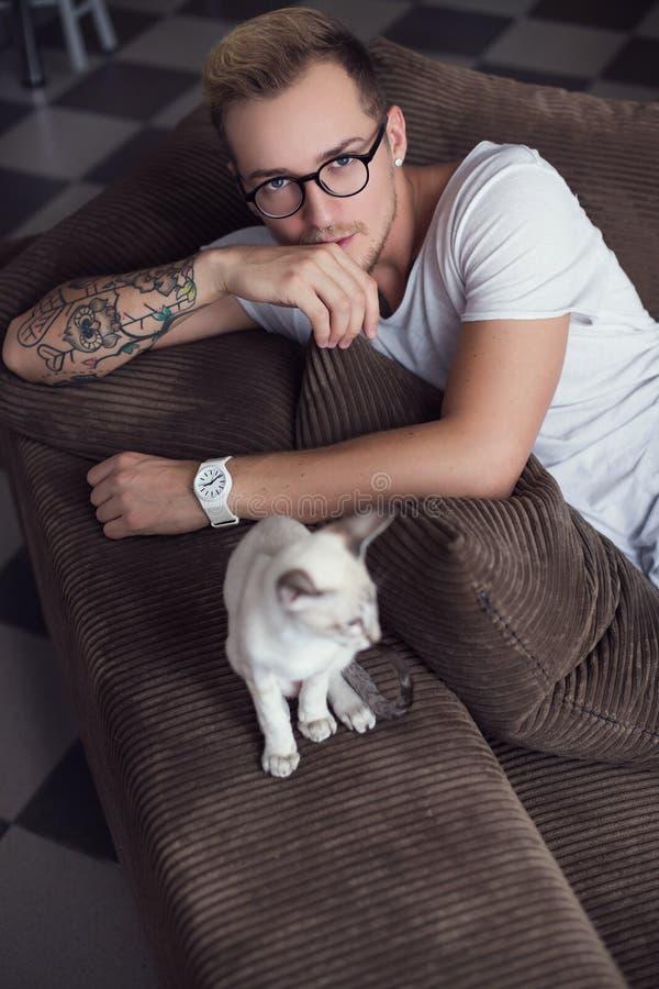Konzept: Freundschaft zwischen Menschen und Tier Orientalisches Shorthair haustiere Katze lizenzfreie stockfotografie