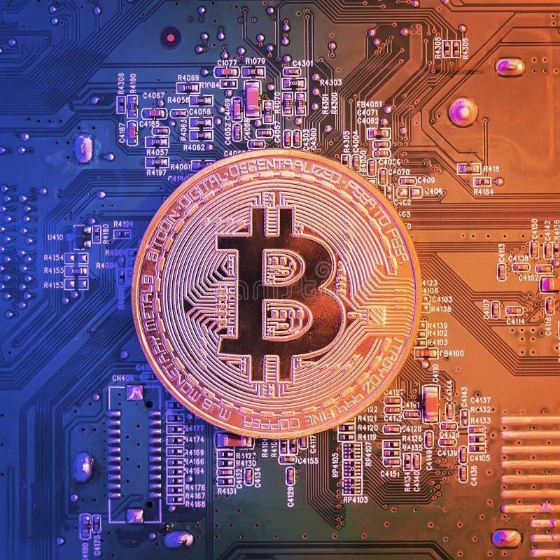 Konzept von Bitcoin-Bergbau Goldenes Bitcoin auf dem Mikrochipbrettabschluß oben stockbilder
