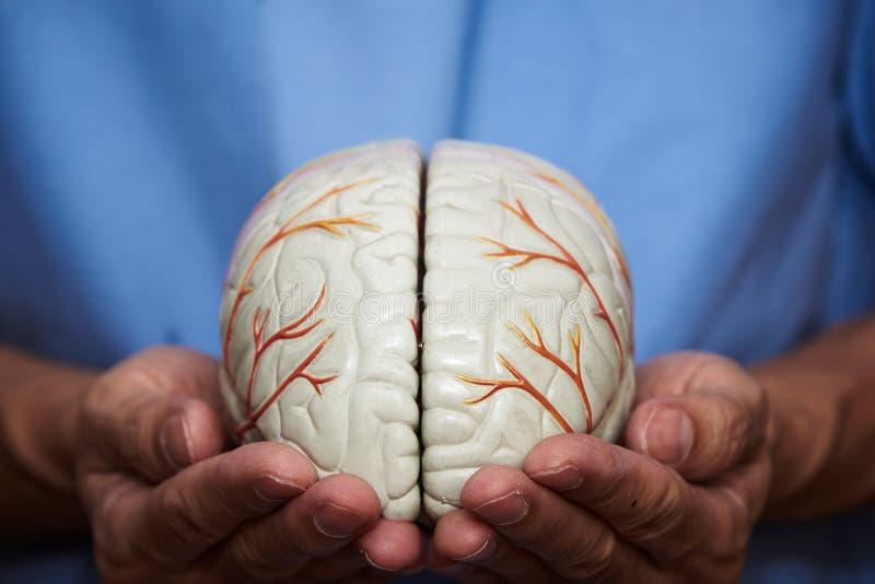 Konzeptdoktor von Mach's gut das Gehirn stockbild