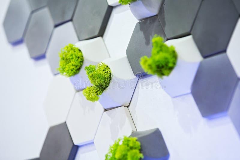 Konzeptentwurf der Wand, der weißen und grauen konkreten Ziegelsteine und des Mooses, die in ihnen wachsen Ökologischer Bürodekor lizenzfreie stockbilder