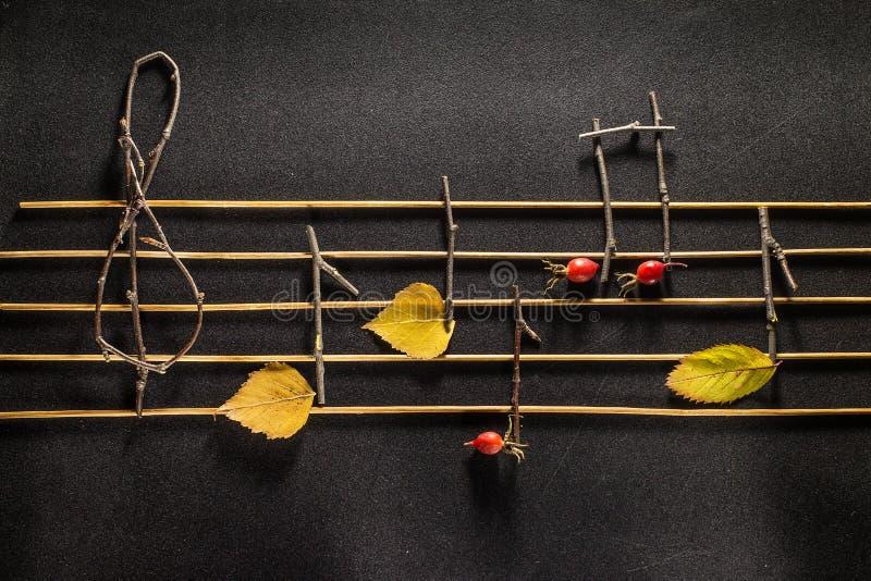 Konzeption der musikalischen Anmerkungen Hölzerne musikalische Anmerkungen und Blätter stockfotografie