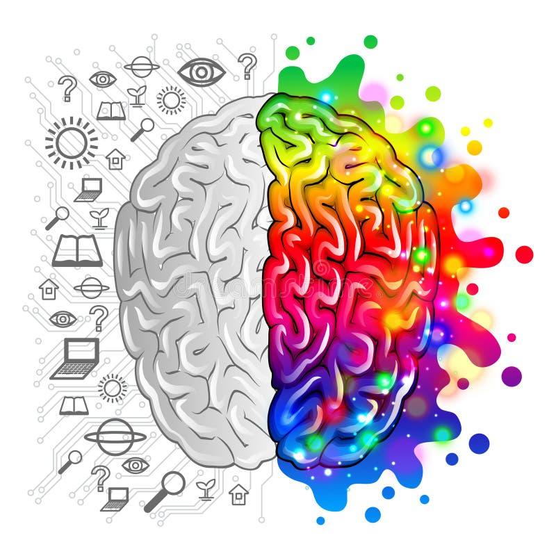 Konzeptlogik des menschlichen Gehirns und kreativer Vektor lizenzfreie abbildung