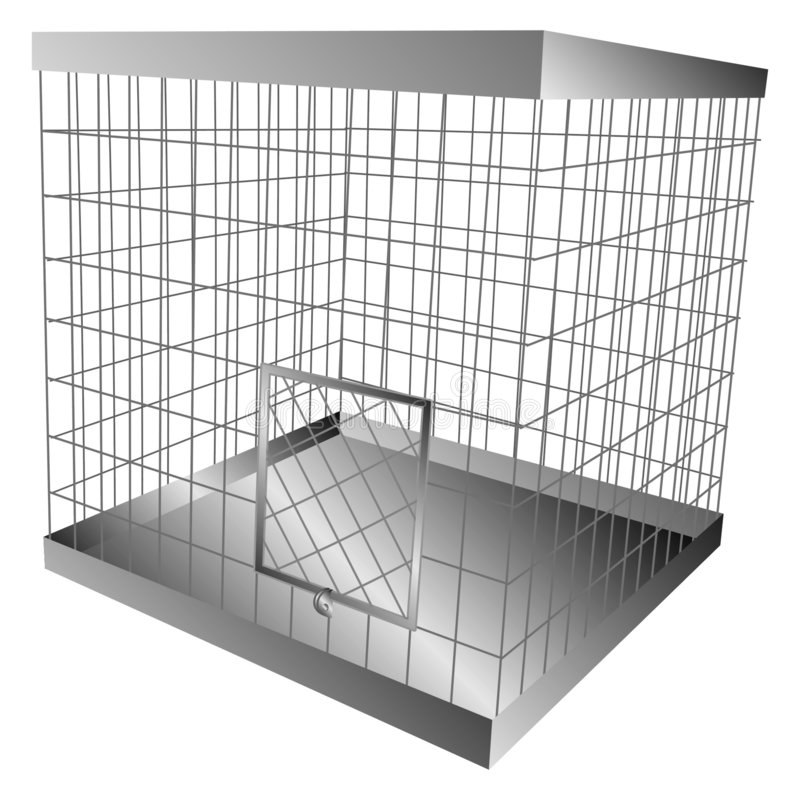 Kooi vector illustratie