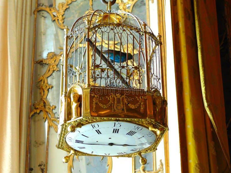 Kooi met een vogel royalty-vrije stock afbeeldingen