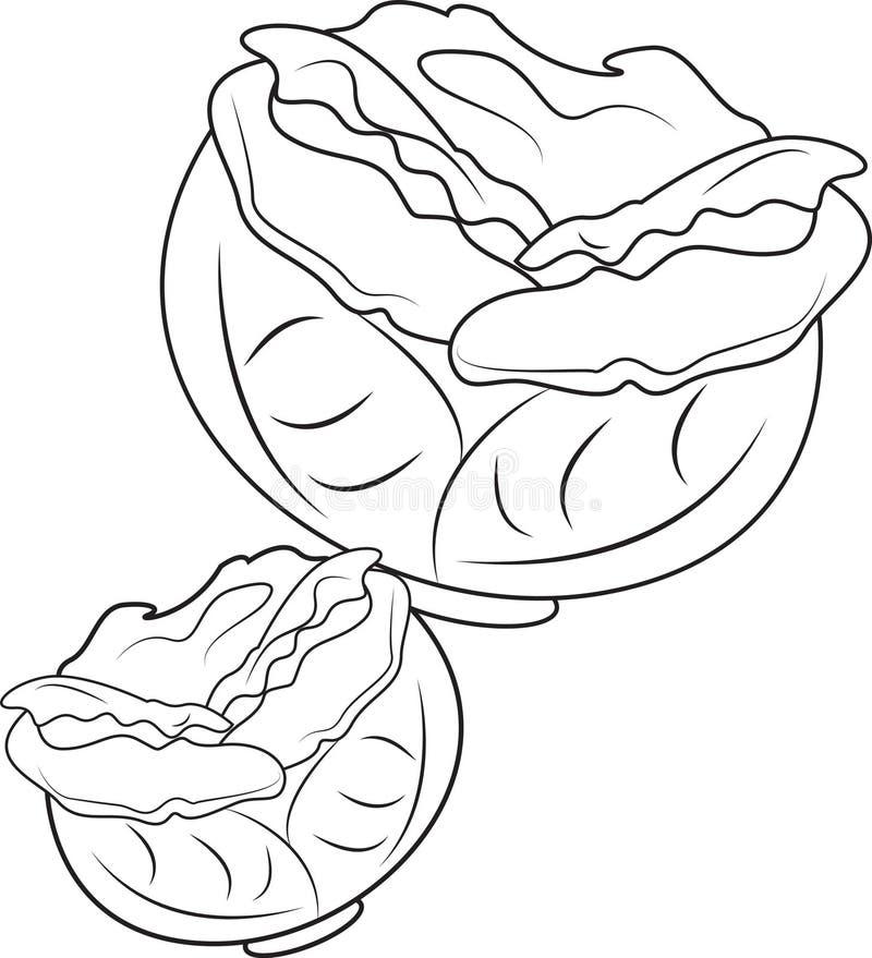Kool vector illustratie