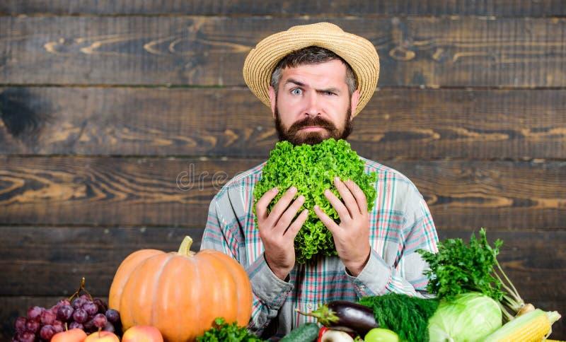 Koop groenten lokaal landbouwbedrijf Inlands oogstconcept Typische landbouwerskerel De oogstfestival van de landbouwbedrijfmarkt  royalty-vrije stock foto