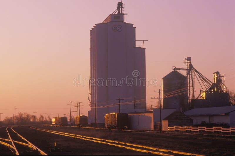 Kooperativt företag för kornsilo i KS på solnedgången royaltyfri foto