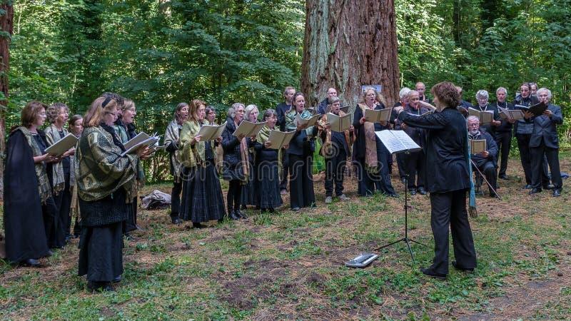 Koor het zingen in het bos royalty-vrije stock afbeelding