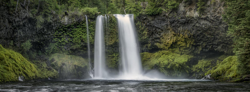 Koosah Spada siklawa Oregon - Willamette las państwowy - obraz stock