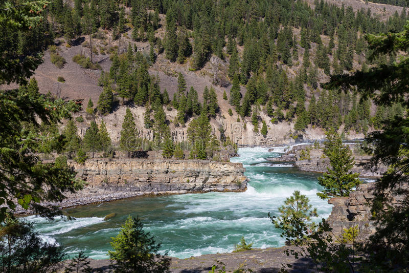 Kootenai flod fotografering för bildbyråer