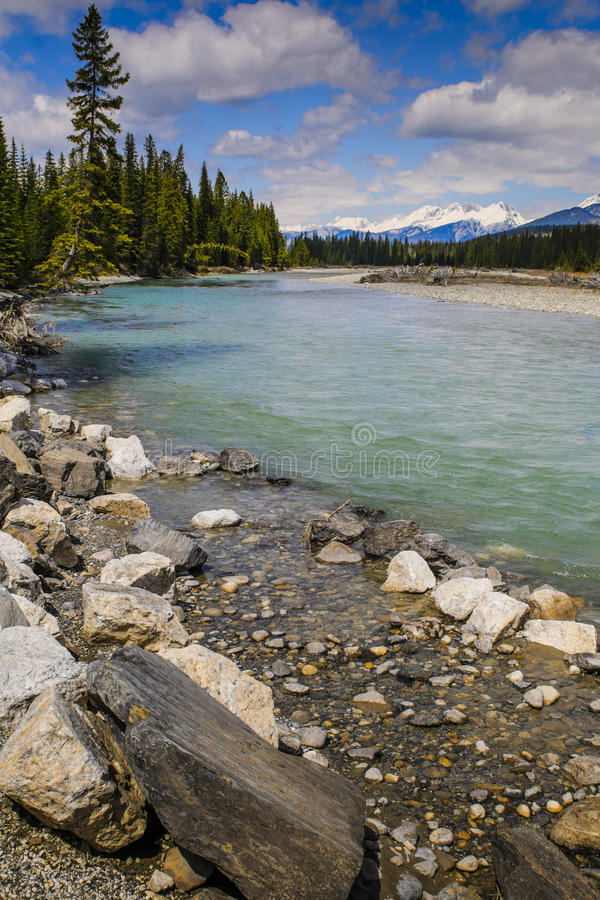 kootenay国家公园 免版税图库摄影