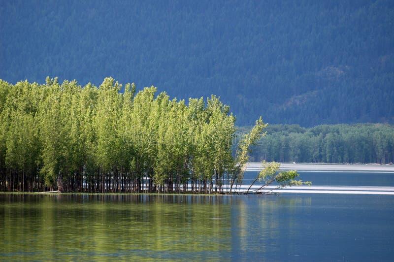 kootenay Kolumbiego Brytyjska jezioro obrazy stock