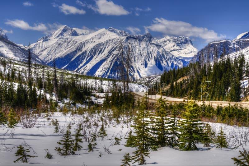Kootenay Nationalpark lizenzfreies stockbild