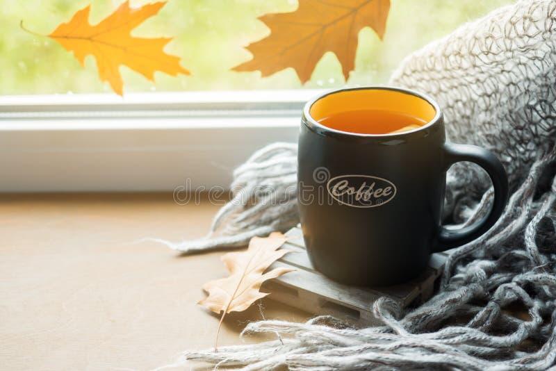Kop hete thee met citroen op de vensterbank Wollen plaid Het stilleven van de herfst Het ` s die buiten regenen De ruimte van het stock afbeelding