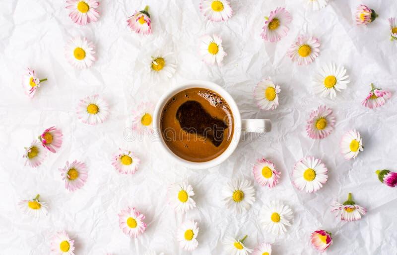 Kop koffie en madeliefjebloemen royalty-vrije stock afbeelding