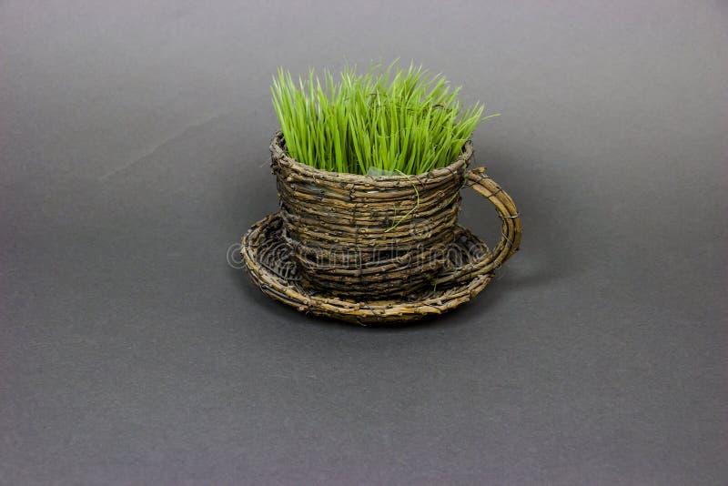 kop met gras royalty-vrije stock afbeeldingen