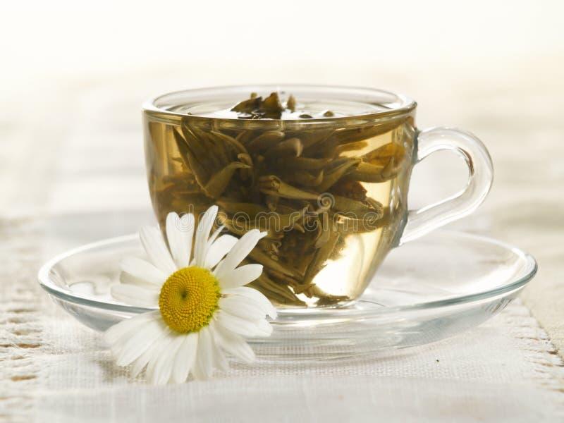 Kop met groene thee stock foto's
