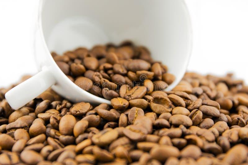 Kop met koffiebonen die wordt gevuld stock foto