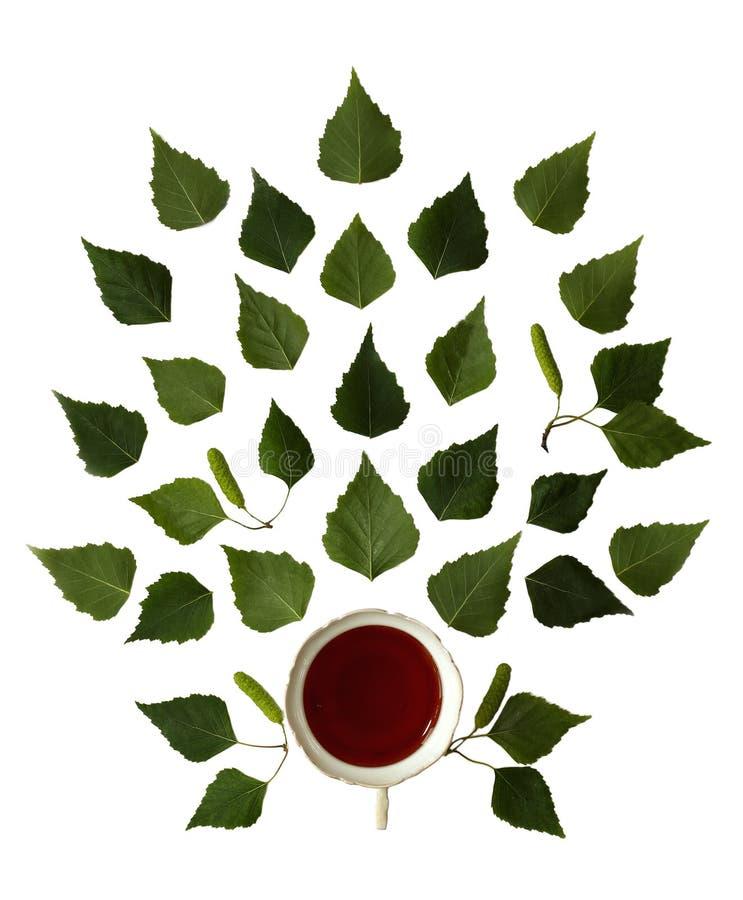 Kop thee en groene geïsoleerde berkbladeren stock afbeelding