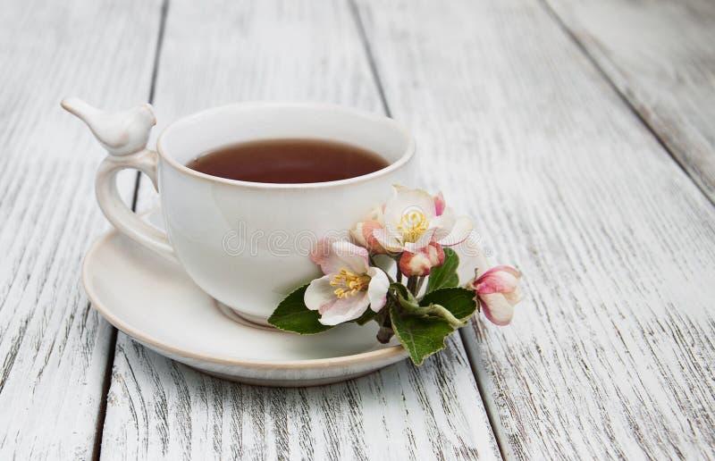 Kop thee met appelbloesems stock afbeeldingen