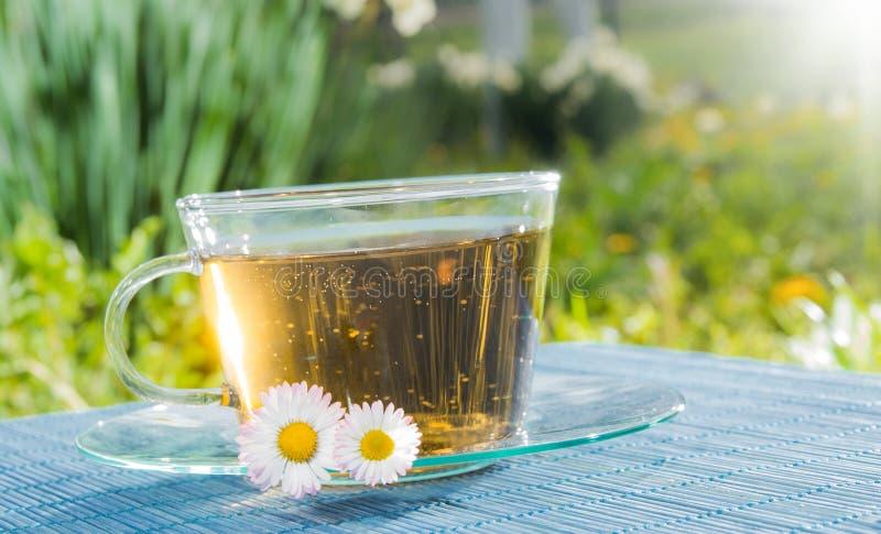 Kop thee met kamillebloem royalty-vrije stock foto