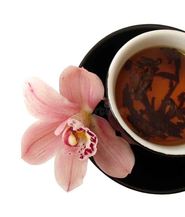 Kop thee met roze orchideeën op zwarte geïsoleerdel plaat stock fotografie