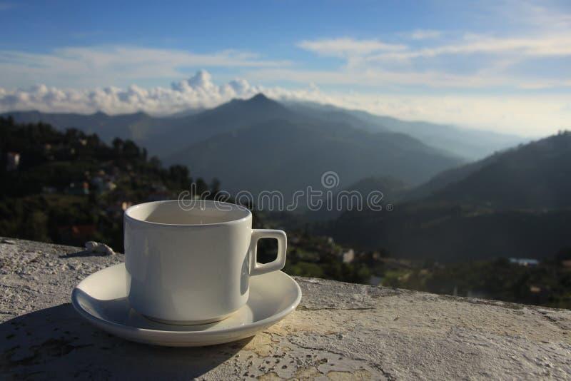 Kop thee tegen de nevelige berg royalty-vrije stock fotografie