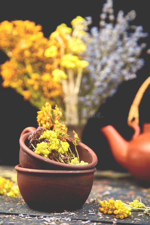 Kop van tutsan aftreksel -, alsem, orego, helichrysum, lavendel stock foto's