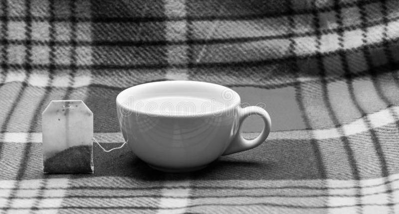 Kop of witte porseleinmok met transparante warm water en zak thee Proces van thee het brouwen in ceramische mok Gevulde mok stock foto's