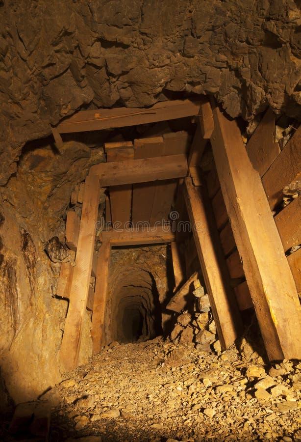 Kopalnia Złota tunel z szalunkami fotografia stock