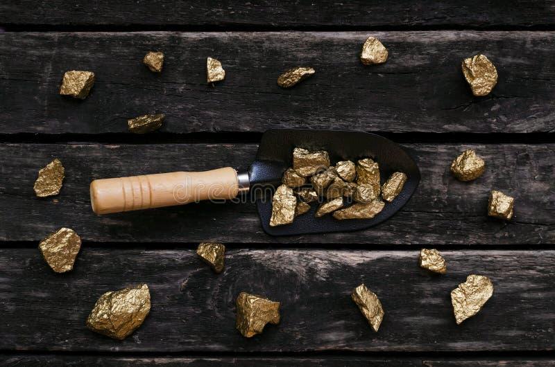 Kopalnia złota Złocisty górnik Złota kruszec w łopacie zdjęcia royalty free