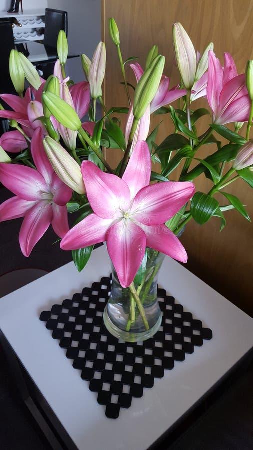 Kopalniani nowi kwiaty obrazy royalty free