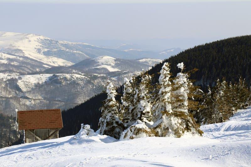 Kopaonik-Berg, Serbien stockfotografie