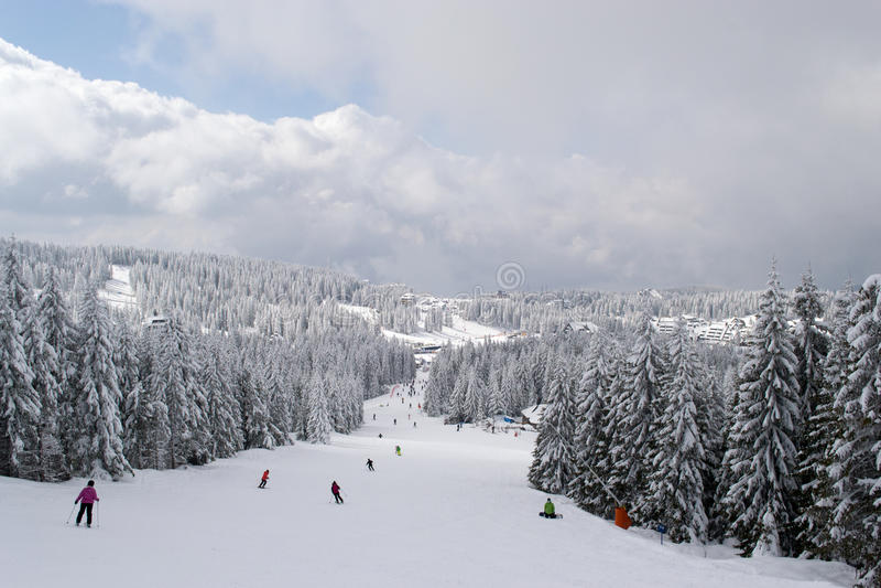 Kopaonik-Skisteigung lizenzfreie stockfotos