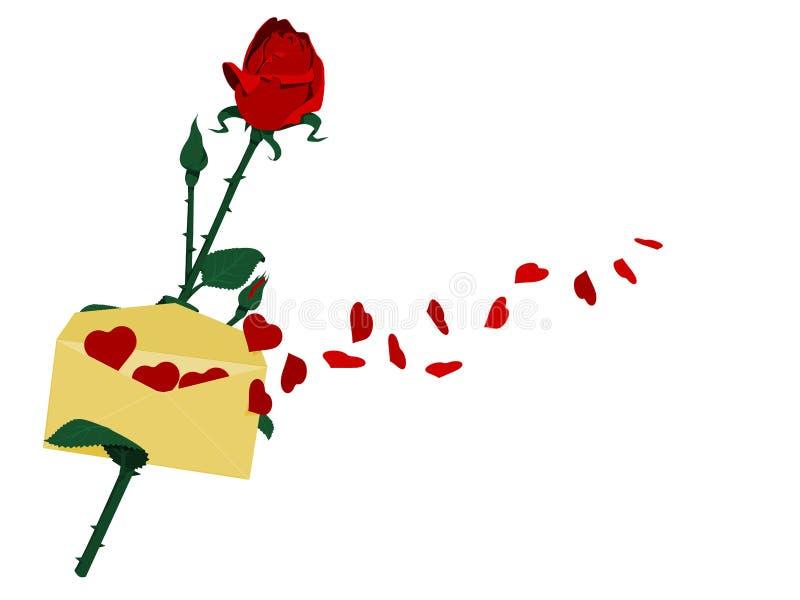 koperta rose ilustracji