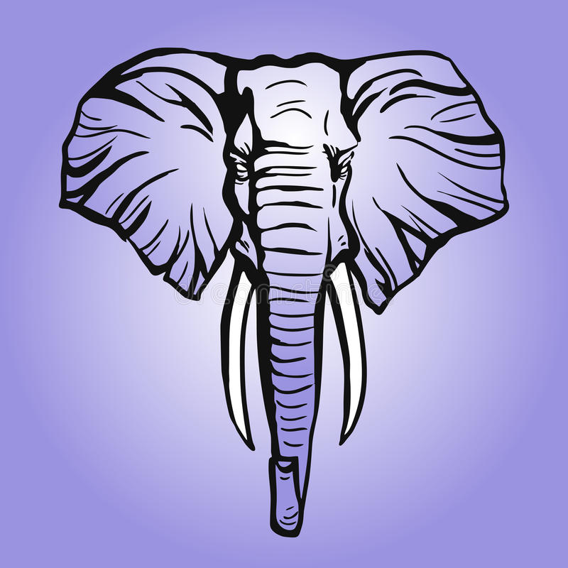 Kopf des afrikanischen Elefanten stockbilder
