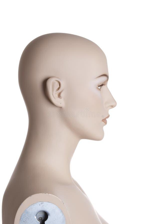 Kopf des weiblichen Mannequins | Studio getrennt lizenzfreies stockfoto