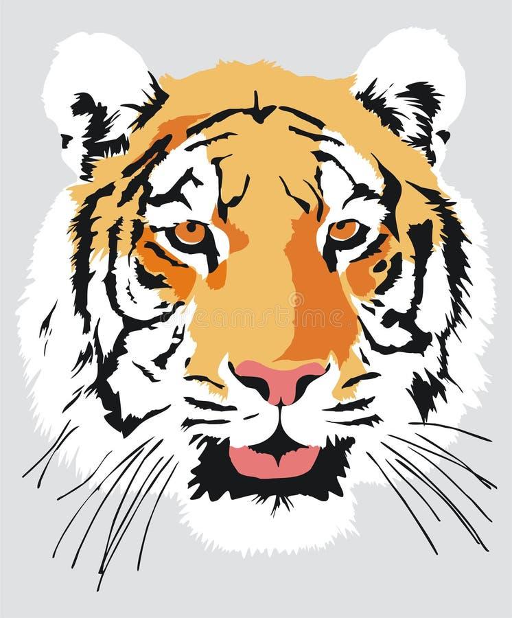Kopf eines Tigers lizenzfreie abbildung