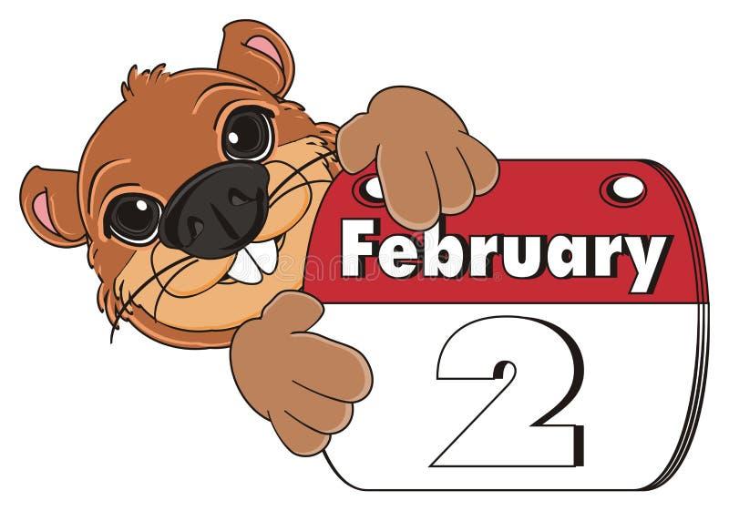 Kopf von groundhog mit Kalender lizenzfreie abbildung