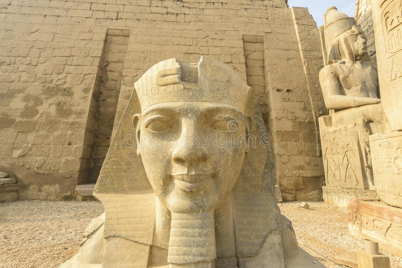 Kopf von Ramses II, der Luxor-Tempel, Ägypten lizenzfreies stockfoto